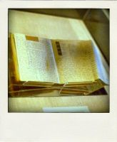 Anne Frank's Diary by fotocali