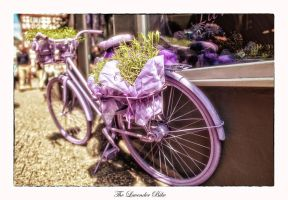 The lavender bike by calimer00