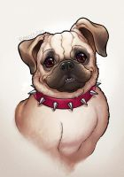 Beans the Pug by CamiFortuna