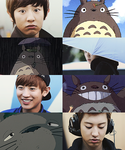 Chanyeol x Totoro by ajikaji