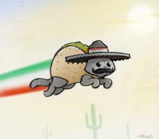 Mexican Nyan Cat by RobtheDoodler
