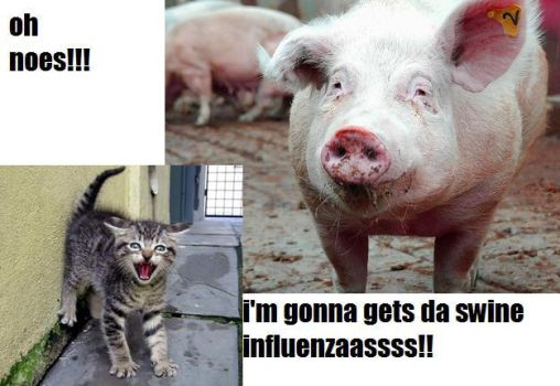 Swine Flu lolcat by 09ShootIt09