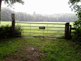 fence by priesteres-stock