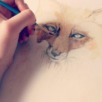 Preview: Commission: Fox watercolour painting. by GeorgiaVictoria