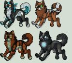 Wolf Adopts 1- NEW PRICES! by Fells-Adopts