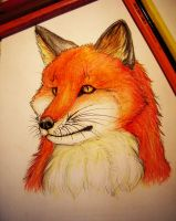 A fox. by KhaliaArt