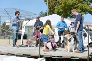 2014 Dog Festival, The Look Alike Contest 14 by Miss-Tbones