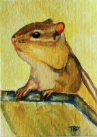 Chip the Chipmunk by pixieled