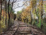 Follow the Rails by Prima-Donna