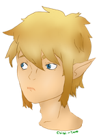 Skyward Sword Link: Headshot by Chibi-Taro