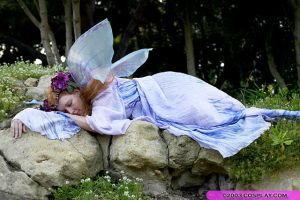 Costume: Fairy by CinsAngel