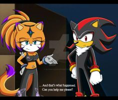 Rai and Shadow (Fake Sonic X Screenshot) by Sayamiyazaki