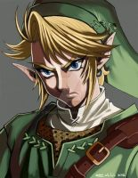 Link-Portrait by dramegar