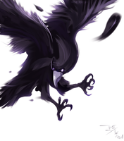 Ikki - The crow by iGeerr