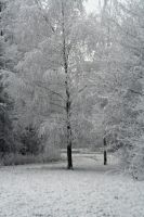 winterland 3 by priesteres-stock