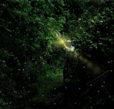 Fireflies to light my way by Painter1959