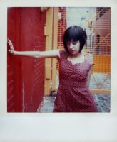 SX-70 polaroid 76 of 100 by lloydhughes