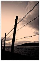 Fence series (5) by c3ntr0py