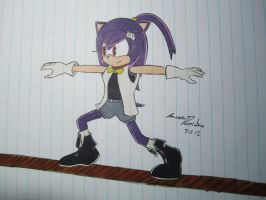 Art Trade: Erin the Hedgehog by F-Stormer-3000