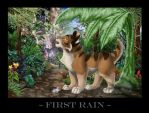 First Rain by meeko-okeem