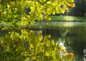 A gentle touch of autumn by MirachRavaia