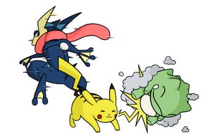 Greninja used Substitute! by Immer