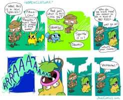 Nomenclature by JHALLpokemon