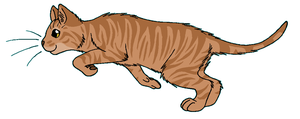 ThunderClan - Runningwind by WildpathOfShadowClan