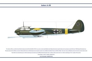 Ju 88 P-1 KG 1 by WS-Clave