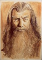 Gandalf by SallyGipsyPunk