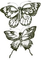 Butterfly Studies by ClaraBacou
