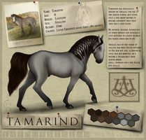 Tamarind's Reference Sheet by ElreniaGreenleaf