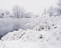 Winter background by Tumana-stock