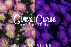 Gimp Curve #11 by bettadenu