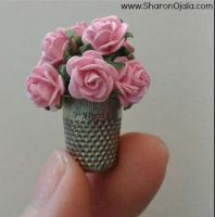 Roses In A Thimble by sojala