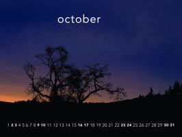 Plant trees - October by aaron4evr