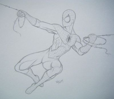 Yet another Spidey pic by Higgie-Baby