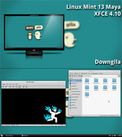 Linux Mint - XFCE - Down Gila by ChetaahMC