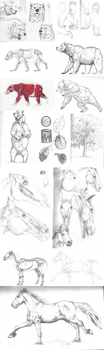 Study Sketches by TheKunterbunter