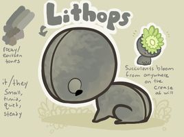 lithops by Skelefrog