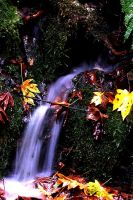 fall falls by CrisisCorps