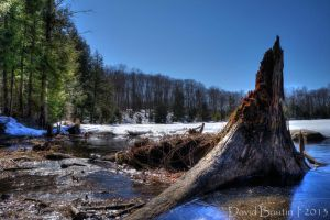 Remains of Winter - HDR by InOnesMindsEye