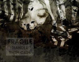 The Fragile by ClockworkMarionette