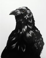 Crow Nevermore by AngelynStarr