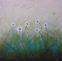 African daisies by Pam-C