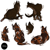 tigerstar and spottedleaf by vikkinq