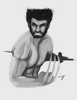 The Wolverine by nicollearl