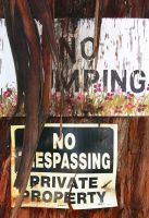 No Mping by Frostola