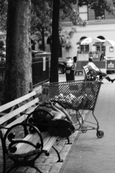 Bum And Shopping Cart by AlexaNoelle