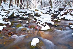 MILLSTONE IN SNOW by FOTOSHOPIC